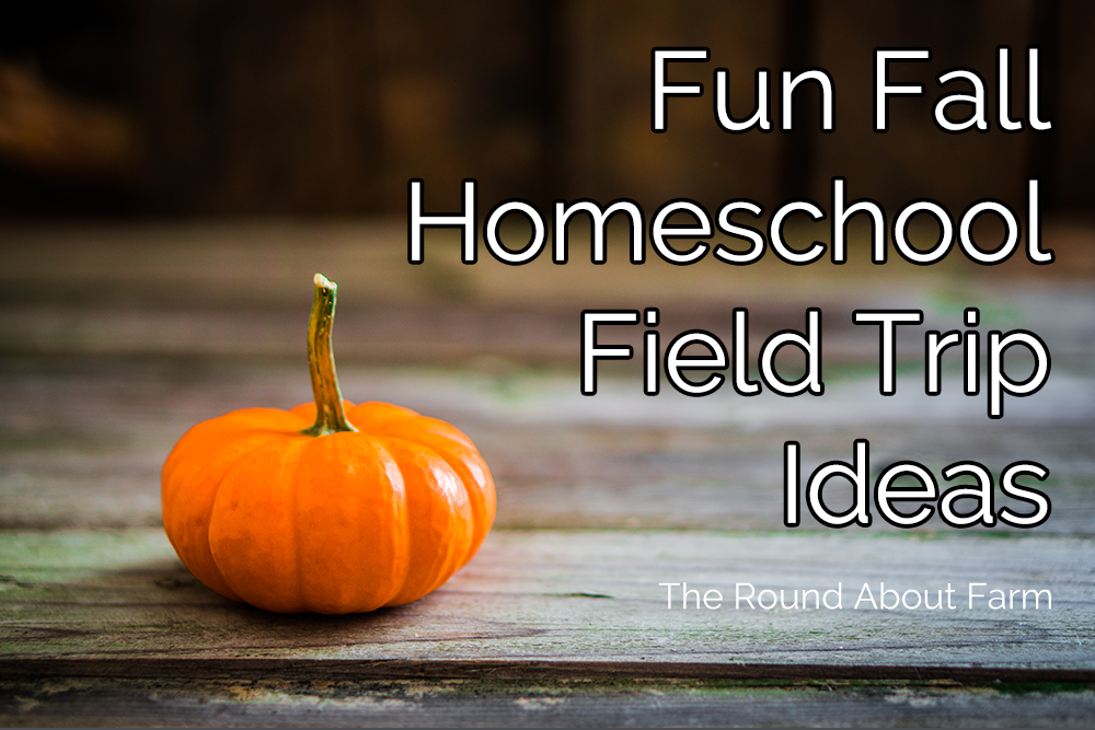 Fun Fall Homeschool Field Trip Ideas